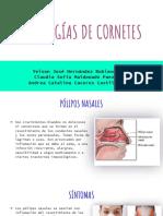 patologia cornetes