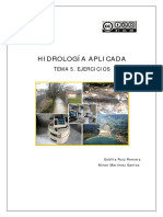 Tema_5_v2.PDF Para Tp6 Piscina Nivelada 2019