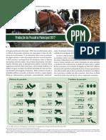 Ppm 2017 v45 Br Informativo