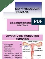 CLASE 13 APARATO REPRODUCTOR FEMENINO.ppt