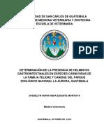 Determinación de La Presencia de Helmintos Gastrointestinales en Especies Carnívoras de La Familia Felidae y Canidae Del Parque Zoológico Nacional La Aurora, Guatemala