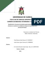 """Identificación y Frecuencia de Parásitos Gastrointestinales en Felinos Silvestres en Cautiverio en Unidades de Manejo de Vida Silvestre de La Provincia Del Azuay""""."""