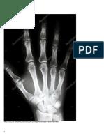 radiografias anatomicas