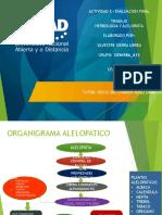 Trabajo de Herbologia y Alelopatia Powerpoint