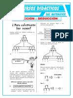 Induccion y Deduccion Para Quinto de Secundaria