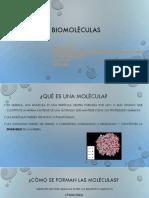 Bio Mol 2020