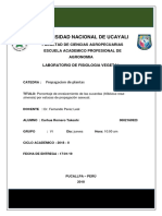 2 Informe de Pro Estacas