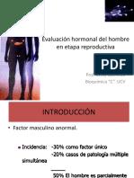 Perfil Hormonal Masculino