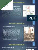 11-_Semaforizacion.pptx