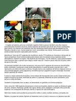 Geografia Amazônica2