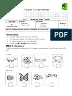 Evaluación animales 1°B