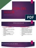 Fisiología Del Dolor Sem 2 2019