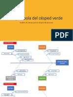 Análisisi de Causas Parábola Del Césped Verde