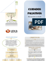 cuid paliativos.docx