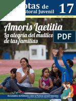 Nota de Pastoral Juvenil 17 - Amoris Laetitia, La Alegría Del Multicolor de Las Familias