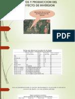 COSTOS Y PRODUCCION DEL PROYECTO DE INVERSION.pptx