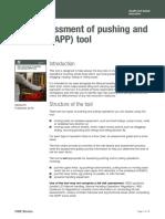 RAPP en Ingles.pdf