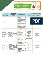 Cronograma de Actividades(1)