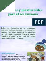 Animales y Plantas Útiles Para El Ser Humano