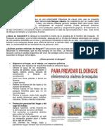 28 Prevencion Del Dengue