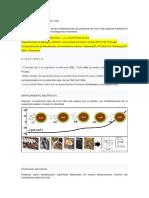 microorganicos patogenos