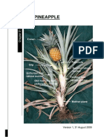 Ch1-The-Pineapple.pdf