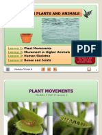 Movement in plants-animals-and-human.pdf