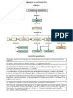 FICHAS DIGESTIVO.pdf