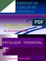 patologia-pulpar-y-patologia-periapical-150203162205-conversion-gate02.ppt