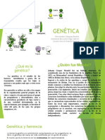 GENETICA.pptx