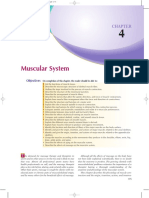 4.a Muscular System.pdf