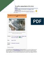Incendios de la selva amazónica de 2019