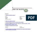 Nudosespecialidaddesarrollada 150803141139 Lva1 App6891