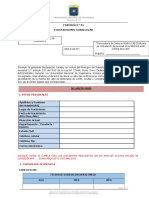 Formato 1 Ficha C