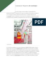 Industria Para Faena de Pollos - 24-09-2014