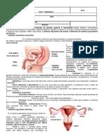 Victor Barlez. Resumo Saude Reprodutiva.8ano - Ciências