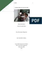 informe ley de coulomb, laboratorio.pdf