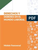 Manual Derechos y Deberes en El Mundo Laboral