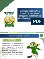 VEEDURIAS CIUDADANAS.pptx
