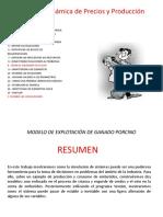 dinamica caso 8.pptx