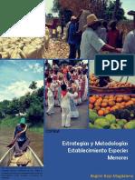 Estrategias Y metodologias