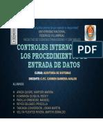 Controles Internos Para Los Procedimientos de Entrada de Datos