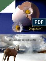 33221_Comoesquecer.pps