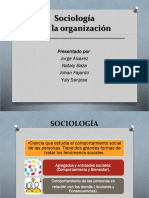 Sociología de La Organizacion