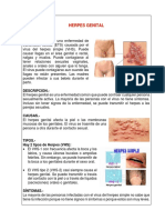 HERPES GENITAL.docx