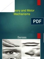 Sensory_and_Motor_Mechanisms for lec [Repaired].pptx