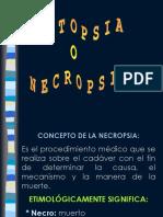 Necropsia.ppt
