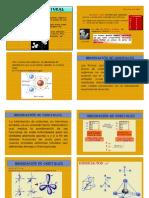quimica 20 diapos.docx