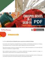 Conceptos Basicos Sobre Seguridad y Salud en El Trabajo