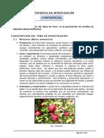 BioProcess PropInvest l017